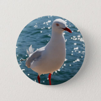 Silver Gull 6 Cm Round Badge