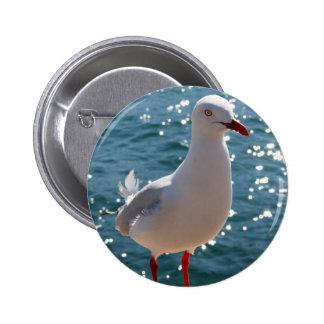 Silver Gull 6 Cm Round Badge