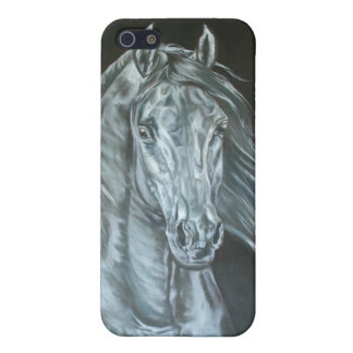 Silver iPhone 5/5S Case