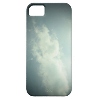 Silver lining iPhone 5 cover
