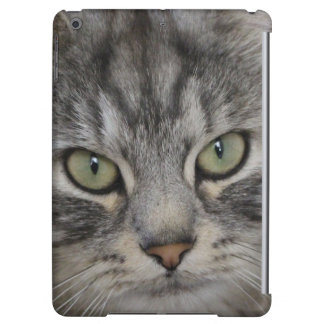 Silver Persian Cat Face iPad Air Case