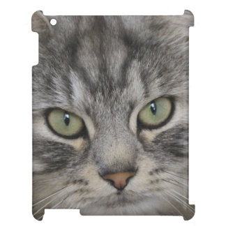 Silver Persian Cat Face iPad Case