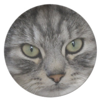 Silver Persian Cat Face Melamine Plate