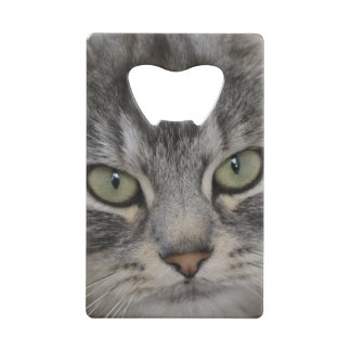 Silver Persian Cat Face Photo Bottle Opener