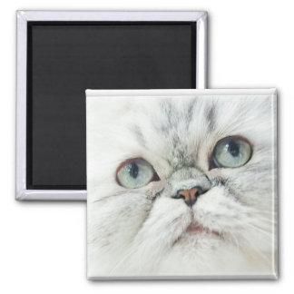 Silver Persian Square Magnet