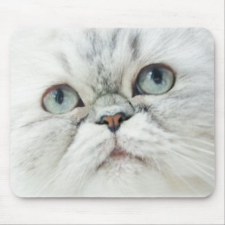 Silver Persian with Blue Eyes Mouse Pad