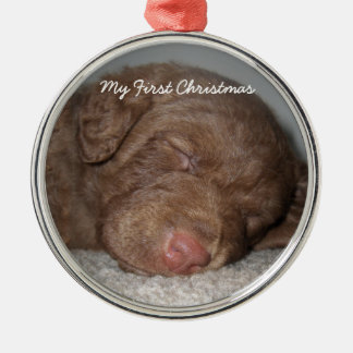 Silver Puppy My First Christmas Photo Ornaments