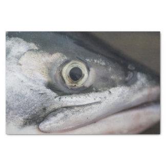 Silver Salmon Face Tissue Paper
