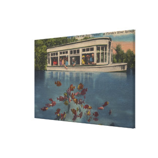 Silver Springs, Florida - View of Riverboat & Canvas Print