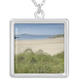 Silver Strand with Clear Island in the Silver Plated Necklace