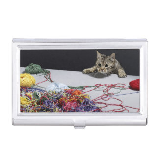 Silver tabby cat climbing over edge of table business card holder