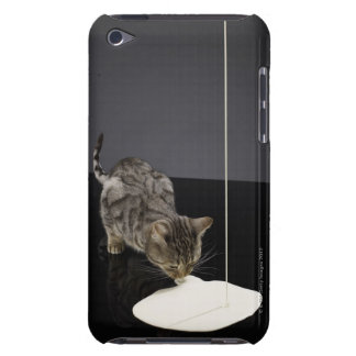 Silver tabby cat drinking cream from floor Case-Mate iPod touch case