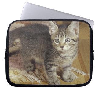Silver tabby kitten, eight weeks old laptop sleeve