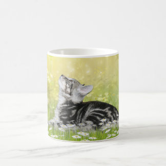Silver tabby kitty in daisies classic white coffee mug