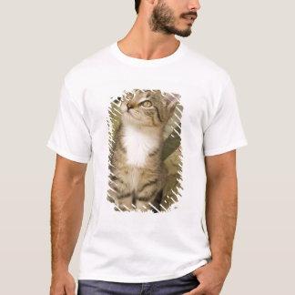 Silver tabby on bedspread T-Shirt