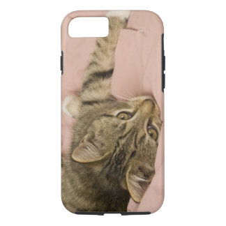 Silver tabby stretched out on bedspread iPhone 8/7 case