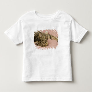 Silver tabby stretched out on bedspread t shirts