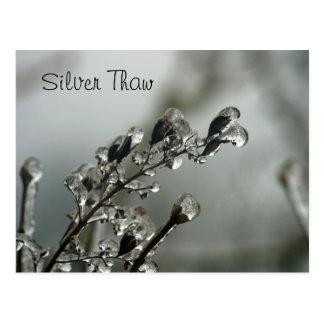 Silver Thaw Postcard