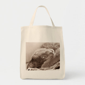 Silver the Cat Grocery Tote