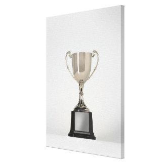 Silver Trophys 3 Canvas Print