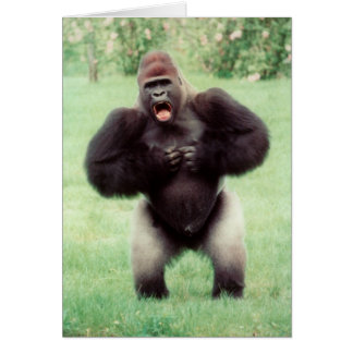 Silverback Gorilla Beating Chest Greeting Cards