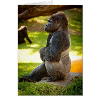Silverback Gorilla Card