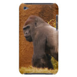 Silverback Gorilla Photo  iTouch Case iPod Touch Cases