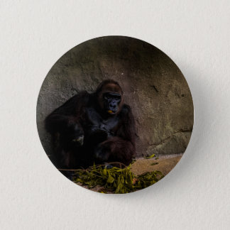 Silverback Gorilla Relaxing 6 Cm Round Badge