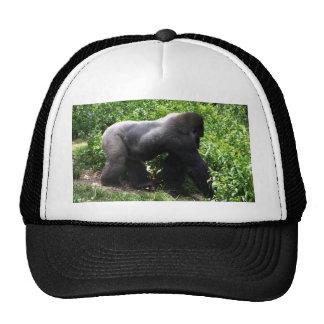Silverback Gorilla walking sideway Trucker Hats