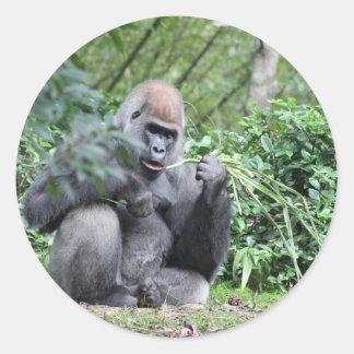 silverback gorillas classic round sticker