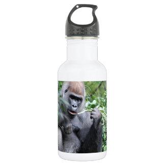 silverback gorillas 532 ml water bottle
