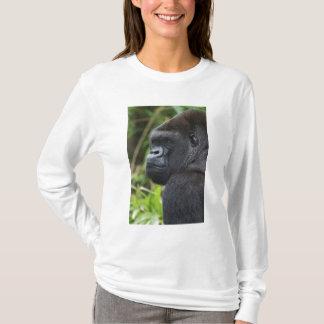 Silverback Lowland Gorilla, Gorilla Captive T-Shirt