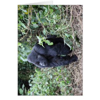 Silverback Mountain Gorilla Stationery Note Card