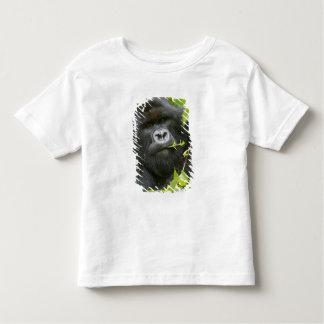 Silverback Mountain Gorilla Toddler T-Shirt
