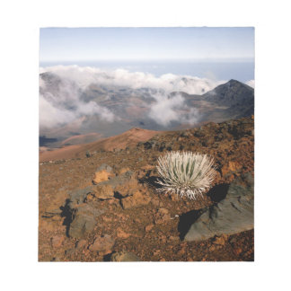 Silversword on Haleakala Crater  Rim from near 3 Notepad