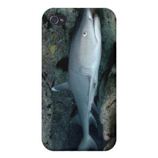 Silvertip Shark iPhone 4/4S Cases