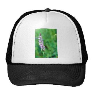 Silvery Lupine Trucker Hat