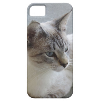 Simon the Blue Eyed Cat Profile iPhone 5 Case