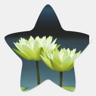 Simple Beauty Star Sticker