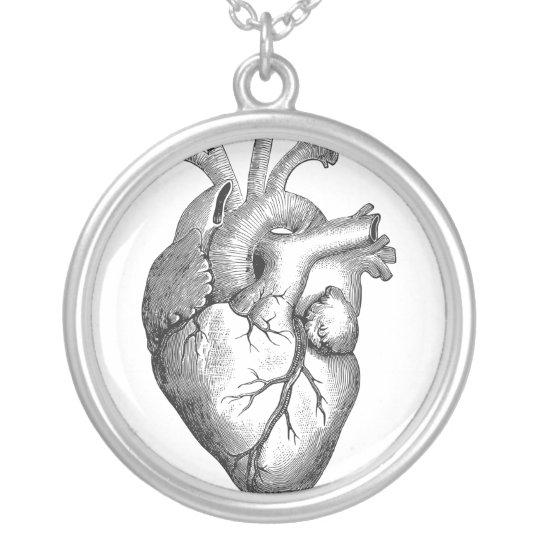 Simple Black White Anatomy Heart Illustration Silver Plated Necklace