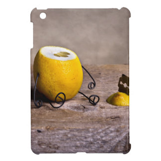 Simple Things - Headless Case For The iPad Mini