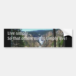 Simplicity Bumper Sticker