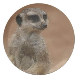 Simply A Meerkat Collectible Plate