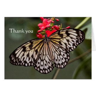 Simply a paper kite, Thank you Card