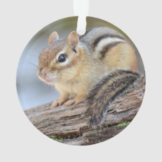 Simply Adorable Little Chipmunk Ornament