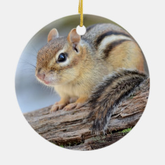 Simply Adorable Little Chipmunk Round Ceramic Decoration