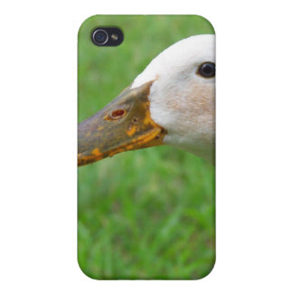 simply ducky phone case iPhone 4/4S covers