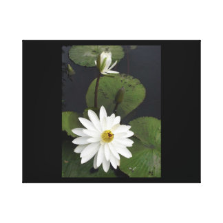 Simply Elegant - Stretched Canvas Print
