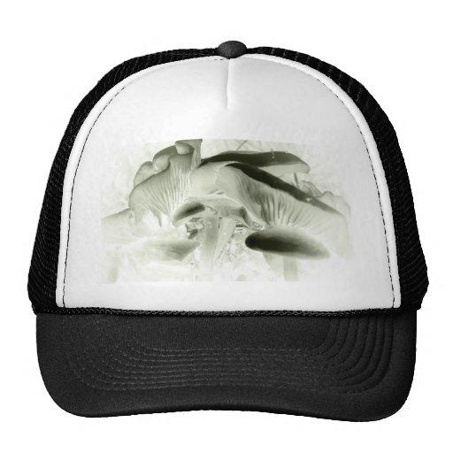 simply mushrooms cap