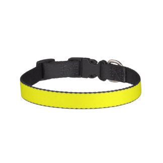 Simply Yellow Solid Color Pet Collars